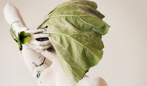 [2014] Frauke – Vibrissa